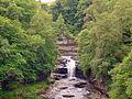 Falls Of Clyde (Corra Linn) (2477742747).jpg