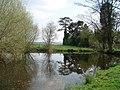 Farm pond at Strangford - geograph.org.uk - 454167.jpg