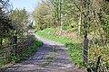 Farm track south of Cwmisfael - geograph.org.uk - 1258400.jpg