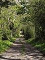Farm track to Addiscott - geograph.org.uk - 1293059.jpg