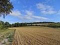 Farmland, Letcombe Bassett - geograph.org.uk - 1571032.jpg