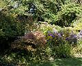 Feeringbury Manor flower and shrub border, Feering Essex England.jpg