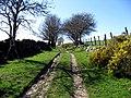 Ffordd Rufeinig. Roman Road - geograph.org.uk - 404957.jpg