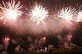 Fireworks in Edogawa, Tokyo; August 2008 (13).jpg