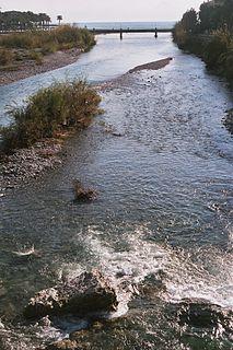 Roya (river)