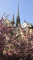 Flèche de Notre-Dame de Paris depuis le square Jean XXII.jpg