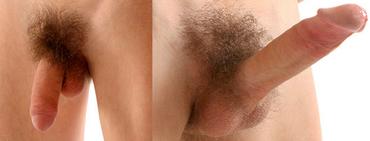 férfi pénisz fotó legjobb ingyenes hentai pornó