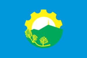 Arsenyev - Image: Flag of Arseniev (Primorsky kray)
