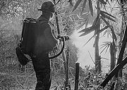 U.S. soldier firing a flamethrower during the Vietnam War
