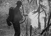 U.S. soldier firing a flamethrower during the Vietnam War