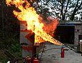 Flamme-gaz-p1010035.jpg
