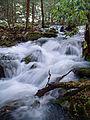 Flickr - Nicholas T - Fall Creek Hike (2).jpg