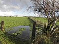 Flooded ground, Garvaghy Big Hill - geograph.org.uk - 1596238.jpg