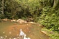 Fluss auf einem Ausflug in Garopaba 5 (21493370024).jpg