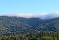 Fog on Black Mountain June 2, 2014 7pm.jpg