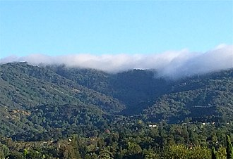 Adobe Creek (Santa Clara County, California) - Fog on Black Mountain over the Adobe Creek headwaters. As the Douglas fir forest returns to the summit, it may add significant precipitation to the watershed via fog drip.