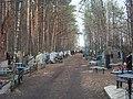 Fokinskiy rayon, Bryansk, Bryanskaya oblast', Russia - panoramio (34).jpg