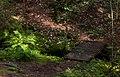 Footbridge and ferns in Gullmarsskogen ravine.jpg
