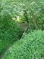 Footbridge over a mill pond feeder stream - geograph.org.uk - 439329.jpg