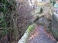 Footpath to Allenmills - geograph.org.uk - 618743.jpg