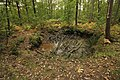 Forêt Départementale de Méridon à Chevreuse le 29 septembre 2017 - 43.jpg