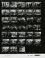 Ford A2666 NLGRF photo contact sheet (1975-01-03)(Gerald Ford Library).jpg