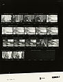 Ford B2644 NLGRF photo contact sheet (1977-01-04)(Gerald Ford Library).jpg