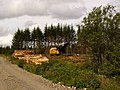 Forestry operations near Low Airies - geograph.org.uk - 508265.jpg