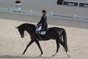 Mikaela Lindh - Mikaela Lindh and Skovlunds Más Guapo in 2014 FEI World Equestrian Games.