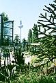 Frankfurt am Main, Palmengarten, der Kaktusgarten.jpg