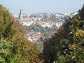 Fribourg - depuis le plateau de Pérolles.jpg