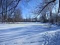 Frozen Thames (12511612175).jpg
