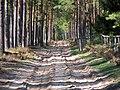 Garkalnes novads, Latvia - panoramio (11).jpg