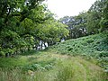 Garlies Woods - geograph.org.uk - 503769.jpg