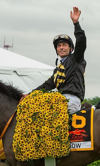 Gary Stevens (jockey) - Gary Stevens at the 2013 Preakness Stakes