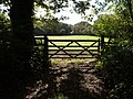 Gate and field near Lower Longwood - geograph.org.uk - 576903.jpg