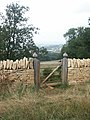 Gate by the Cotswold Way - geograph.org.uk - 221221.jpg