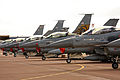 General Dynamics F-16 Fighting Falcons 2 (7570379496).jpg