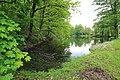 Geschützter Landschaftsbestandteil Schubertgrund in Sachsen. 2H1A1134WI.jpg