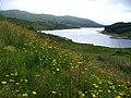 Glen Finglas Reservoir, Upper Reaches - geograph.org.uk - 219976.jpg