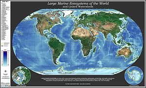 Large marine ecosystem - Global map of large marine ecosystems. Oceanographers and biologists have identified 64 LMEs worldwide.