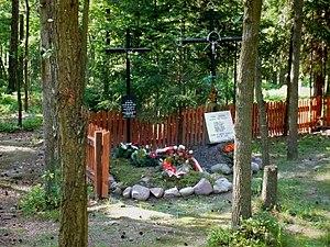 Uroczysko Baran killing fields - One of the mass graves of Uroczysko Baran