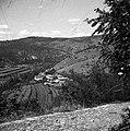 Golo Brdo s ceste Breg - Golo Brdo 1953.jpg