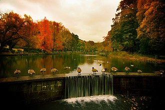 Port Washington, New York -  Baxter Pond, November 2007