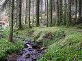 Gortin Glens Forest Park (17) - geograph.org.uk - 1712677.jpg