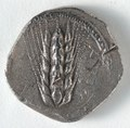 Greece, Matapontum, 6th century BC - Stater- Ear of Corn (obverse) - 1916.986.a - Cleveland Museum of Art.tif