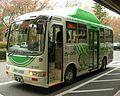 Green Bus G-101.jpg
