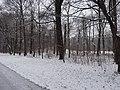 Großer Garten, Dresden in winter (1061).jpg
