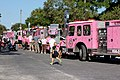 Guardians of the Ribbon - 2011 Pink Heals Tour (6191529461).jpg