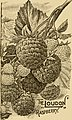 Guide to hardy fruits and ornamentals (1903) (14580725978).jpg